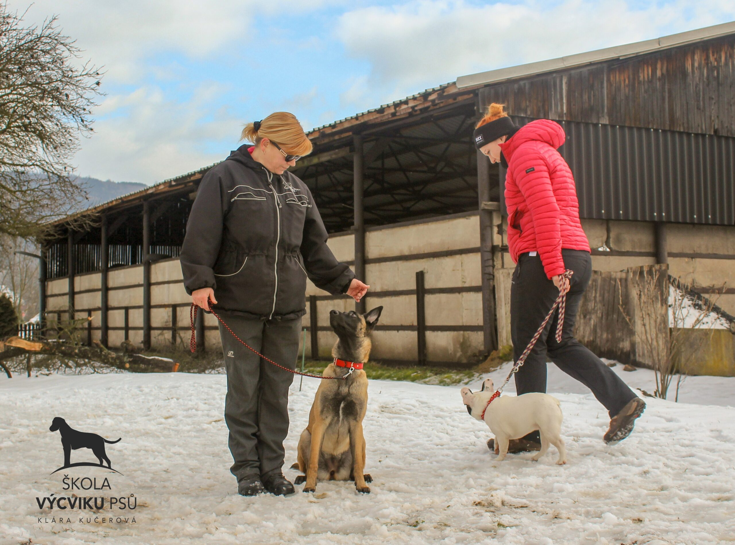 Jak naučit psa u chodit u nohy bez pamlsku tahá na vodítku NEPOSLOUCHÁ